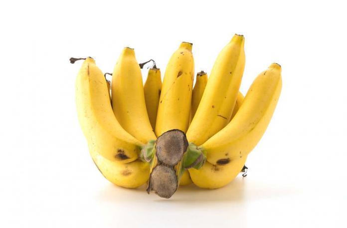 Włókno z bananowca